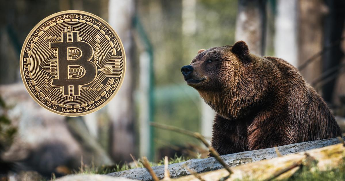 Tag: bear market
