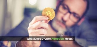 Read about what experts make of crypto adoption