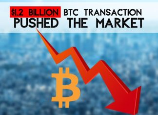 Bitcoin down. Who's responsible?