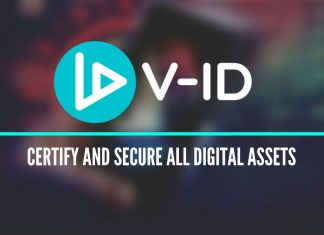 V-ID: Project Overview
