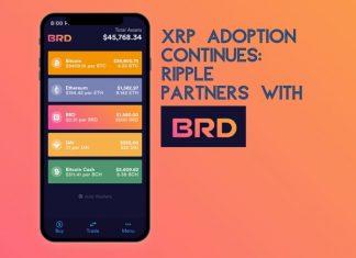 XRP adoption