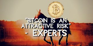 """Experts Call Bitcoin An """"Attractive Risk"""""""