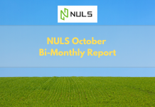 NULS October Bi-Monthly Report