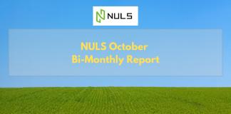 NULS October Bi-Monthly Report