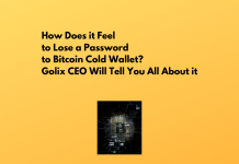 How Does it Feel to Lose a Password to Bitcoin Cold Wallet? Golix CEO Will Tell You All About it