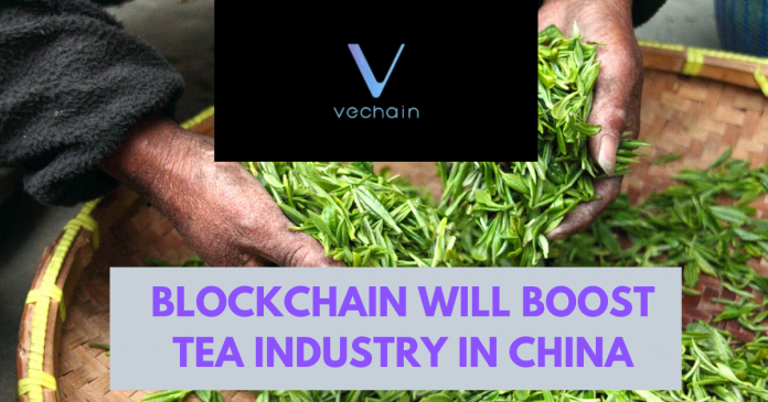 VeChain and tea