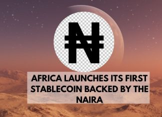 africa launches its first stablecoin backed by the naira