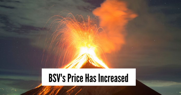 Bitcoin SV (BSV) Price Increases After Tulip Trust III Filing