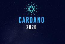 Cardano in 2020