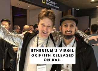 Virgil Griffith Released on Bail