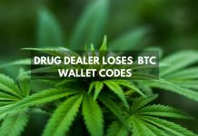 Drug Dealer Loses Code for €53.6 Million Worth of Bitcoin
