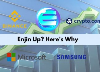 Enjin Pump and the Reason Behind It