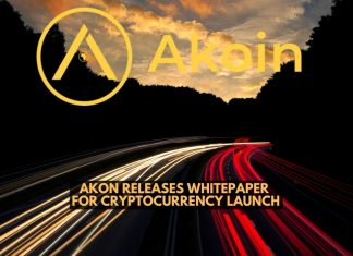 Akon Releases Whitepaper for Cryptocurrency Launch