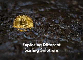 Exploring Different Scaling Solutions