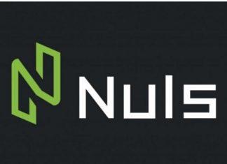 NULS Nerve Network