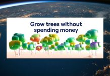 rTrees project