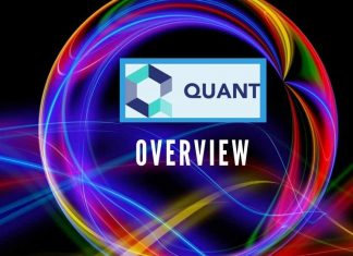 Quant Overview The Connectivity Backbone for Blockchain