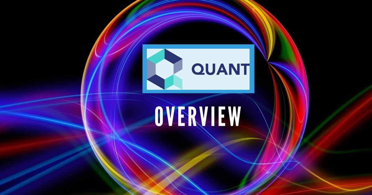 <bold>Quant</bold> Overview: The Connectivity Backbone for Blockchains