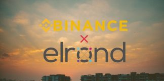 Binance Partners Elrond for Stablecoin BUSD