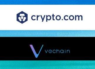 VeChain on Syndicate platform