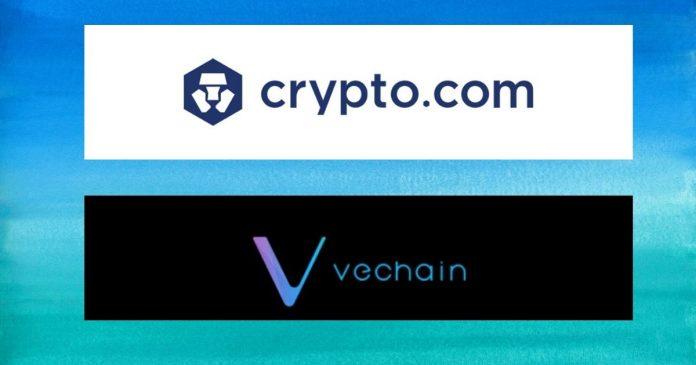 VeChain on Syndicate platform