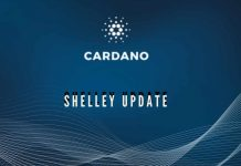 Cardano Shelley Update