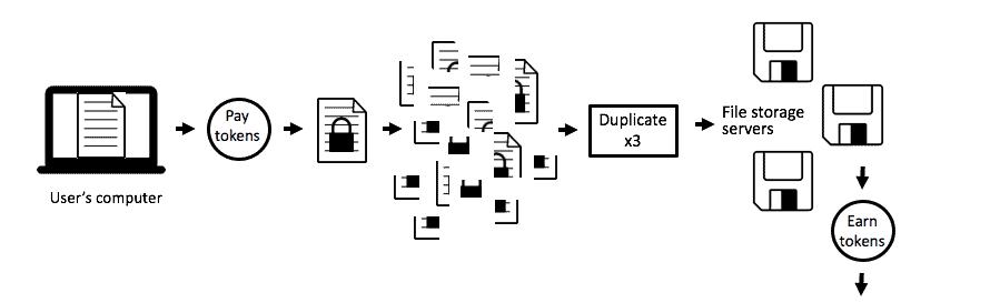 Sia network design