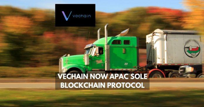 Vechain now APAC sole blockchain protocol