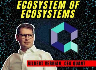 Quant: Blockchain Ecosystem of Ecosystems