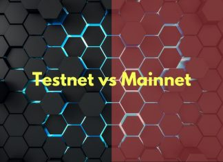 mainnet vs testnet