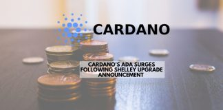 Cardano's ADA Surges Following Shelley Upgrade Announcement