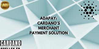 Adapay Cardano
