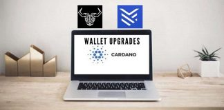 Cardano Daedalus Flight Shipped for ADA Holders