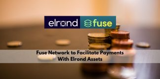 Fuse Network to Facilitate Payments With Elrond Assets