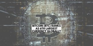 Bitcoin (BTC) Ranks as 6th Largest Global Currency