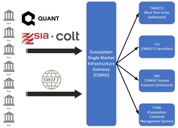 Quant Network and SIA