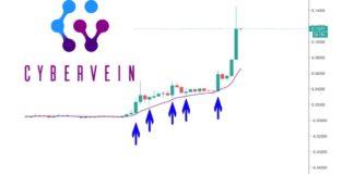 CyberVein (CVT) Up 5000% in 2020