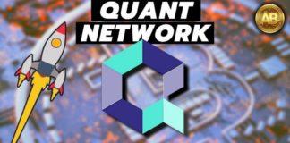 Quant Network (QNT) Treasury Model Guide