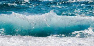 Crypto Market Update: CRV, KSM, QNT, WAVES, BNB Price Predictions