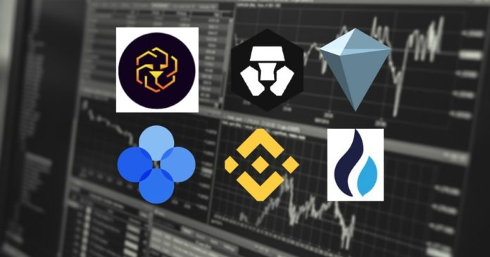 Which Exchange Token Will Lead the Bull Run?