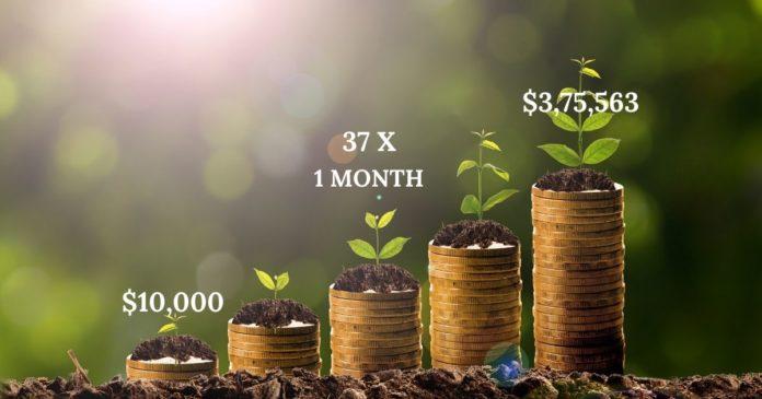 Gratis kryptohandelssignaler: 37x på en månad !!!