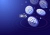 IRIS Price: Mainnet Upgrade
