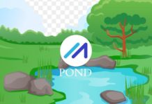 POND Price Prediction