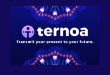 Ternoa Blockchain – Immortalizing Memories and Data