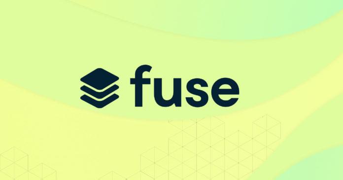 Säkringsnätverk: Hur man sätter in och delegerar FUSE-token