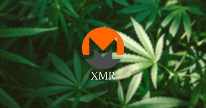 XMR-prisförutsägelse