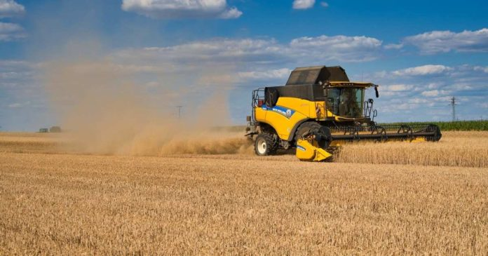DeFi Farming Boosted as YieldShield Testnet Goes Live