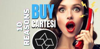 10 Compelling Reasons to Buy Cartesi (CTSI) (1)