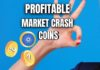 5 Profitable Coins in This Market Crash
