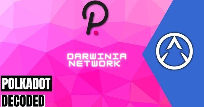 Darwinia Network: The Polkadot Bridge Hub